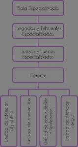 Estructura organos especializados